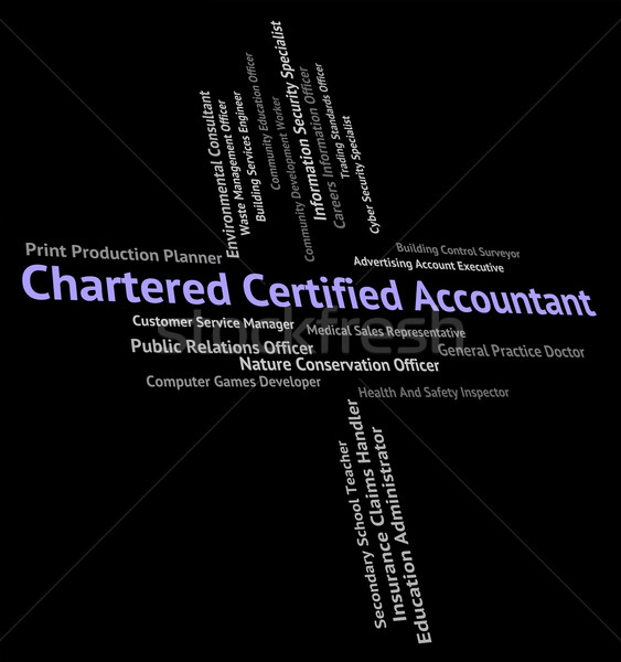 Chartered Certified Accountant Shows Balancing The Books And Acc Stock photo © stuartmiles