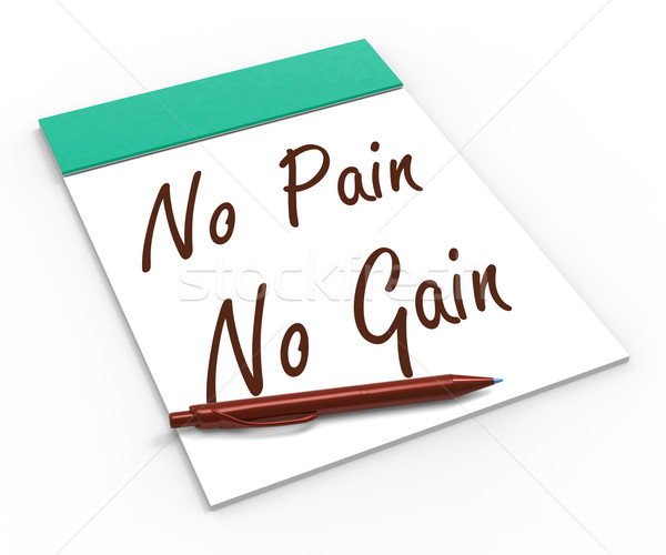 No Pain No Gain Notebook Shows Hard Work Retributions And Motiva Stock photo © stuartmiles