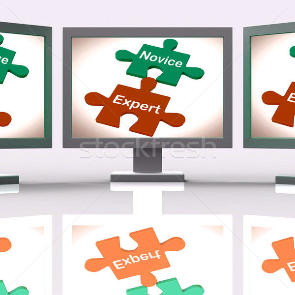 Novice Expert Puzzle Screen Shows Unskilled And Professional Stock photo © stuartmiles