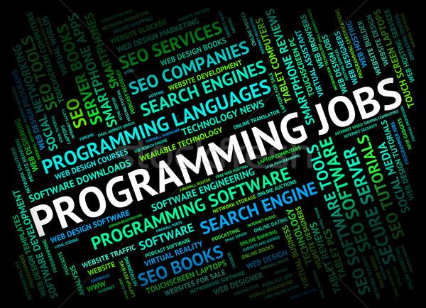 Programowanie oferty pracy oprogramowania rozwoju kariery pracy Zdjęcia stock © stuartmiles