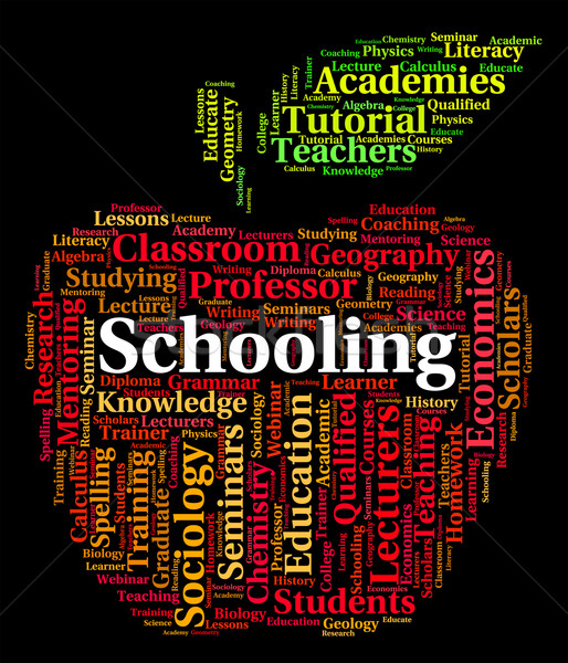 Schooling Word Shows Study Schools And Education Stock photo © stuartmiles