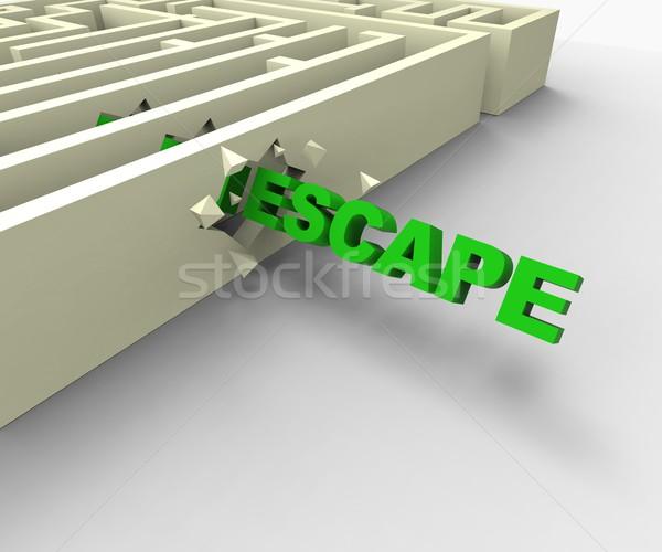 échapper labyrinthe libre prison Photo stock © stuartmiles