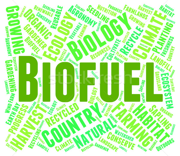 Biocombustibles palabra poder electricidad Foto stock © stuartmiles