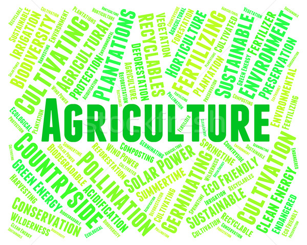 Agriculture Word Indicates Farmland Cultivate And Farms Stock photo © stuartmiles