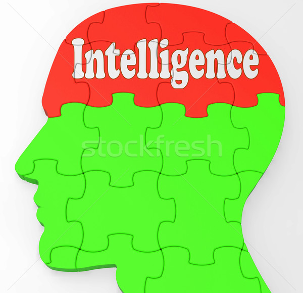 Intelligence Brain Shows Knowledge Information And Education Stock photo © stuartmiles