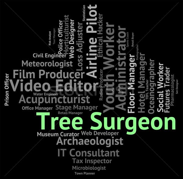 Tree Surgeon Means Job Jobs And Hiring Stock photo © stuartmiles
