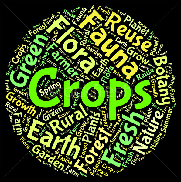 Crops Word Shows Harvests Grains And Grain Stock photo © stuartmiles