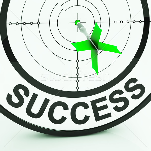 Success Target Shows Achievement Strategy And Winning Stock photo © stuartmiles