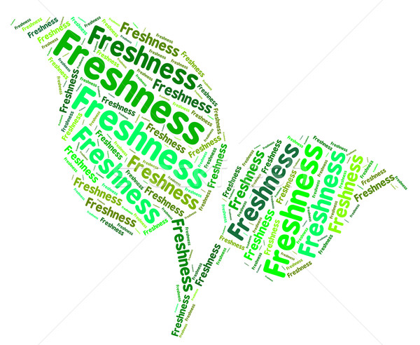 Freshness Word Represents Words Raw And Text Stock photo © stuartmiles
