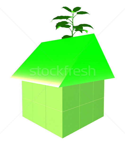 Eco Friendly House Shows Earth Day And Building Foto stock © stuartmiles