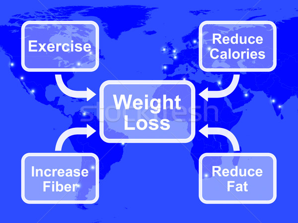 Weight Loss Diagram Showing Fiber Exercise Fat And Calories Stock photo © stuartmiles
