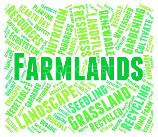 Woord agrarisch woorden boerderij tekst Stockfoto © stuartmiles