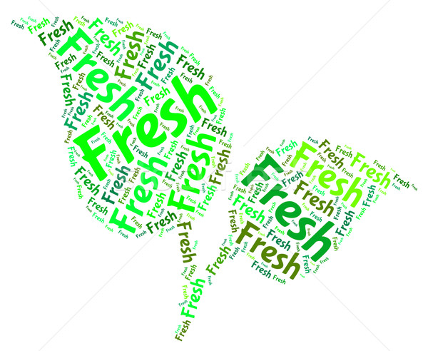 Fresh Word Shows Natural New And Freshness Stock photo © stuartmiles