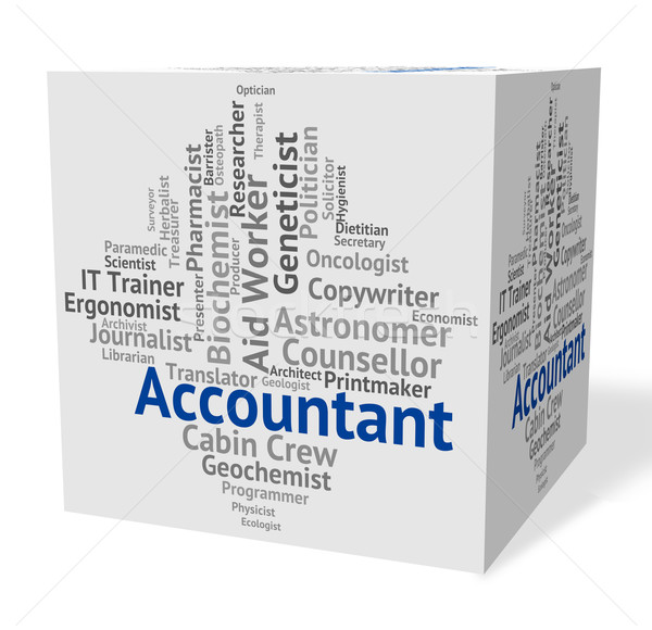 Accountant Job Represents Balancing The Books And Accountants Stock photo © stuartmiles