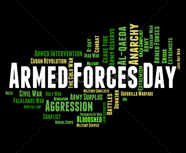 Armed Forces Day Shows Military Action And Army Stock photo © stuartmiles