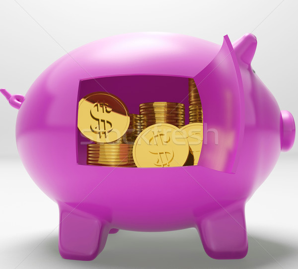 Dollar Coins Piggy Shows Prosperity And Security Stock photo © stuartmiles