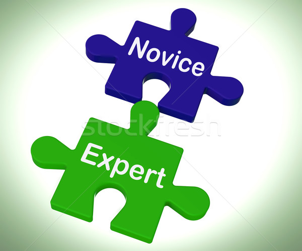 Novice Expert Puzzle Shows Unskilled And Professional Stock photo © stuartmiles