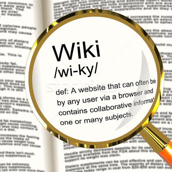 Wiki definitie vergrootglas tonen online gemeenschap Stockfoto © stuartmiles