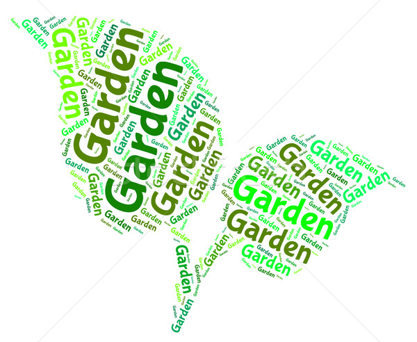 Garden Word Represents Words Outside And Lawns Stock photo © stuartmiles