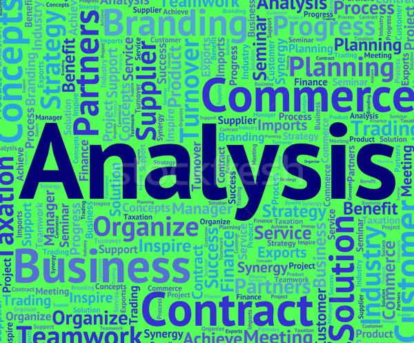 Analysis Word Shows Data Analytics And Analyse Stock photo © stuartmiles