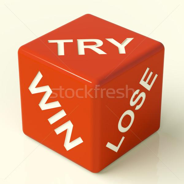 Gagner perdre dés jeux Photo stock © stuartmiles