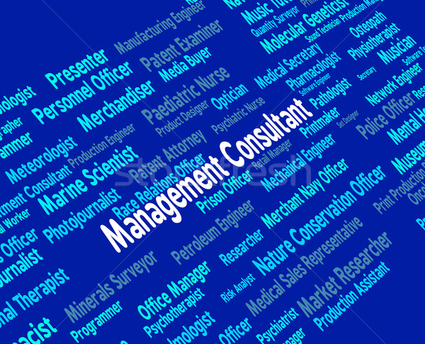 Management Consultant Means Occupations Adviser And Job Stock photo © stuartmiles