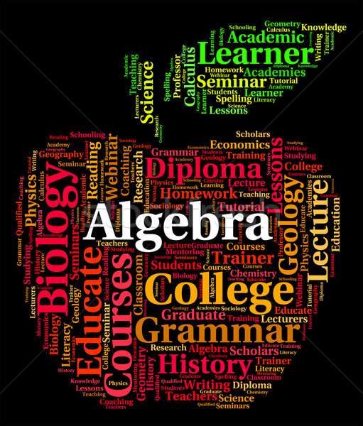 Algebra Word Represents Math Fractions And Words Stock photo © stuartmiles