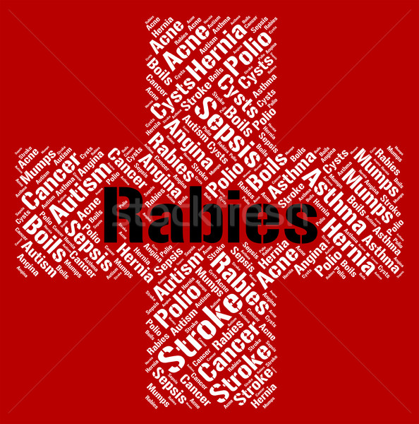 Rabies Word Indicates Poor Health And Affliction Stock photo © stuartmiles