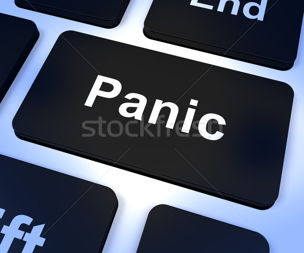 Panic Computer Key Showing Anxiety Stress And Hysteria Stock photo © stuartmiles