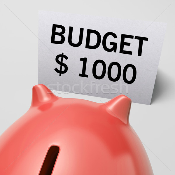 One Thousand dollars, usd Budget Shows Limitations Stock photo © stuartmiles