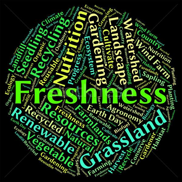Freshness Word Means Freshen Raw And New Stock photo © stuartmiles