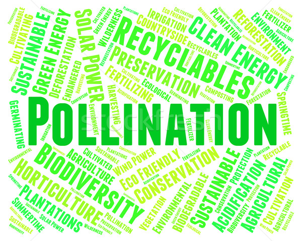 Pollination Word Represents Fertilize Text And Procreation Stock photo © stuartmiles