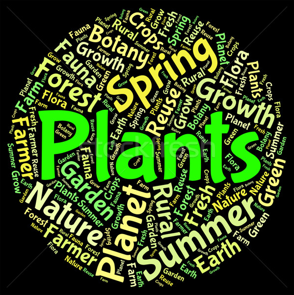 Plants Word Means Herbage Text And Botanical Stock photo © stuartmiles