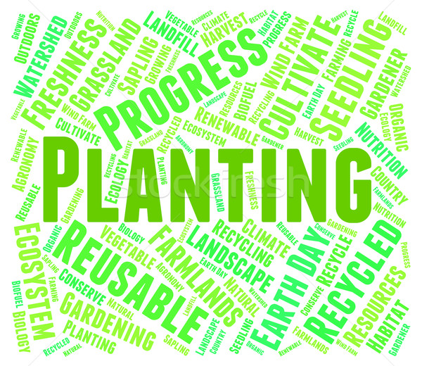 Planting Word Indicates Cultivation Grow And Growth Stock photo © stuartmiles