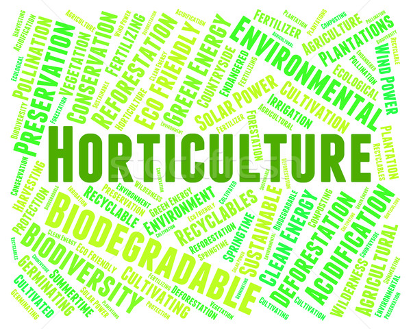 Stock photo: Horticulture Word Indicates Flower Garden And Agrarian