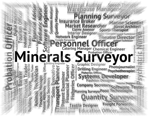 Minerals Surveyor Means Ores Employment And Work Stock photo © stuartmiles