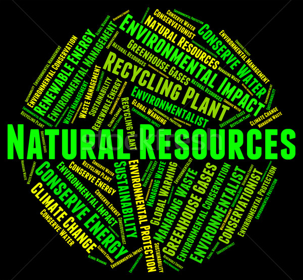 Environmental Impact Means Assessment Effect And Words Stock photo © stuartmiles