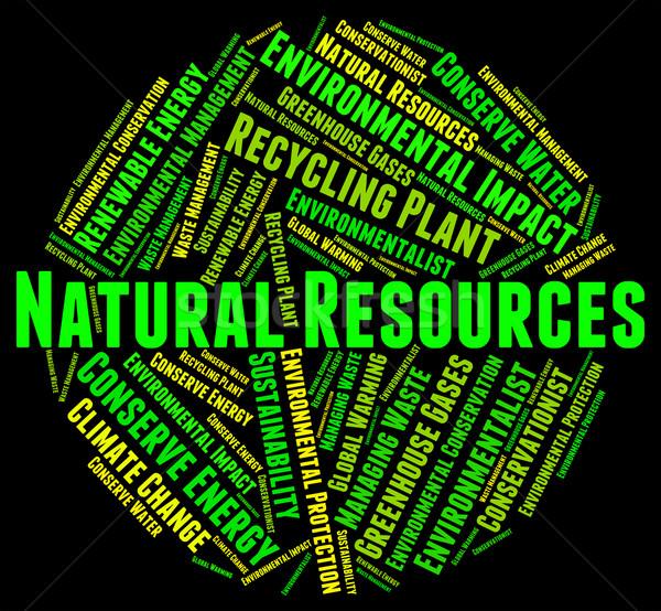 Ambiental avaliação efeito palavras dia da terra conseqüências Foto stock © stuartmiles