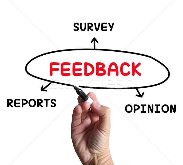 Feedback Diagram Means Reports Criticism And Evaluation Stock photo © stuartmiles