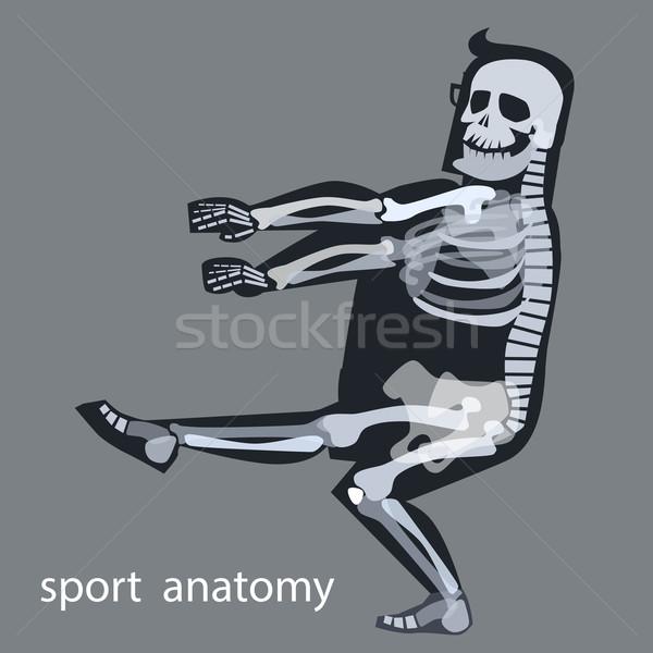 Iskelet anatomi spor erkek jimnastik insan Stok fotoğraf © studiostoks