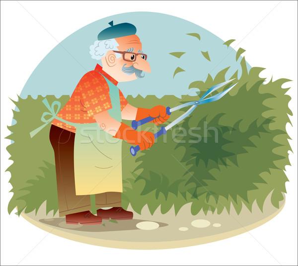 Velho jardineiro trabalhando jardim Foto stock © studiostoks