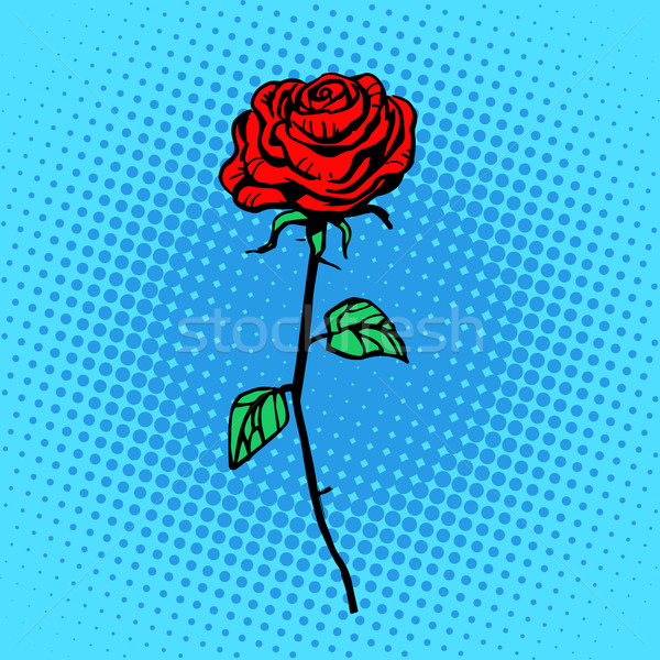 Flower red rose stem with thorns Stock photo © studiostoks