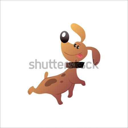 Happy funny dog Stock photo © studiostoks