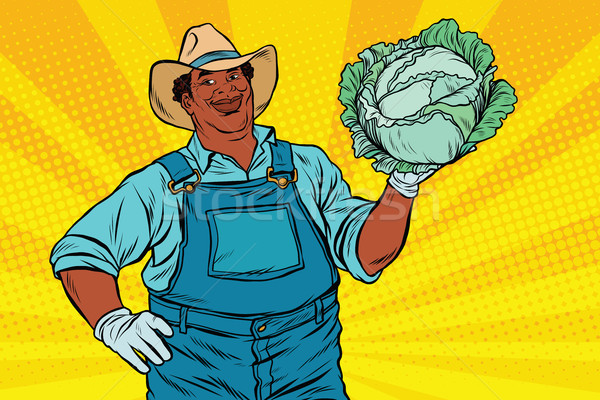African American farmer with cabbage Stock photo © studiostoks