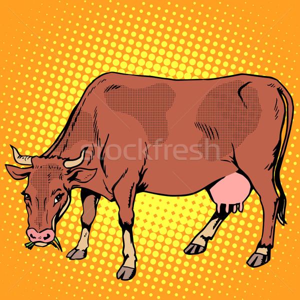 корова еды трава сельскохозяйственных животных Поп-арт ретро-стиле Сток-фото © studiostoks