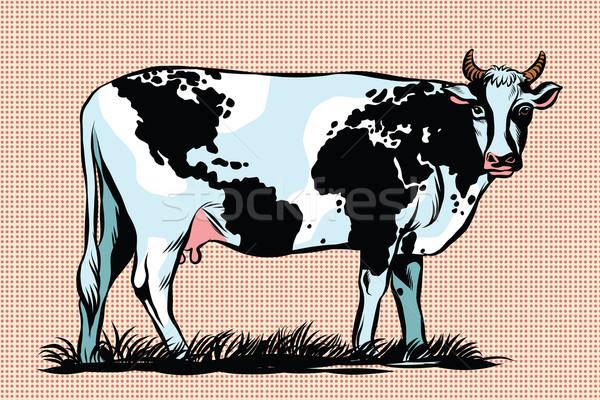 Cow Milk world map pattern on the skin Stock photo © studiostoks