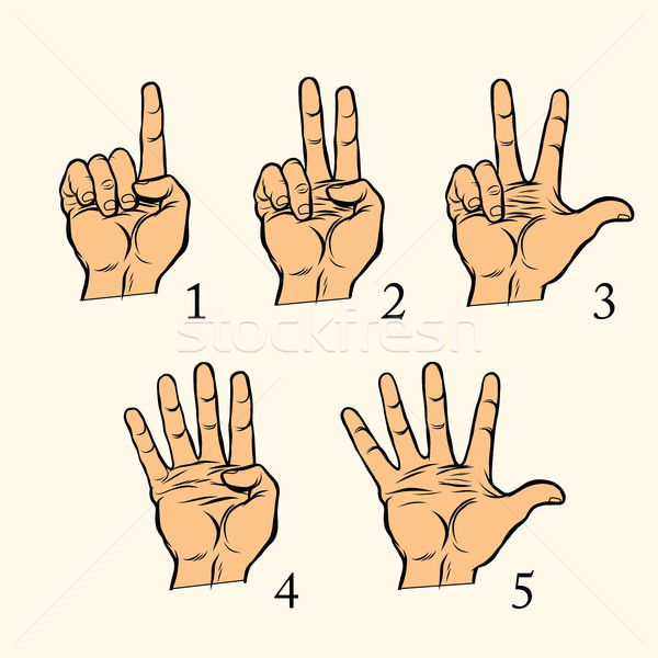 Set of hand gestures count 1 2 3 4 and 5 Stock photo © studiostoks