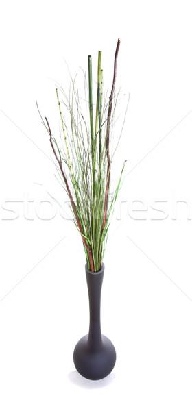 Grzech trawy przestrzeni czerwony biały dekoracji Zdjęcia stock © Studiotrebuchet