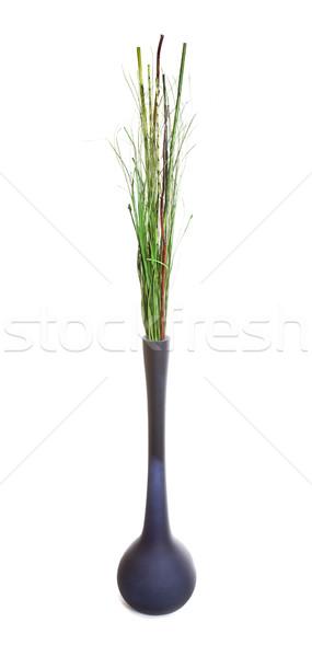 грех трава пространстве красный белый украшение Сток-фото © Studiotrebuchet