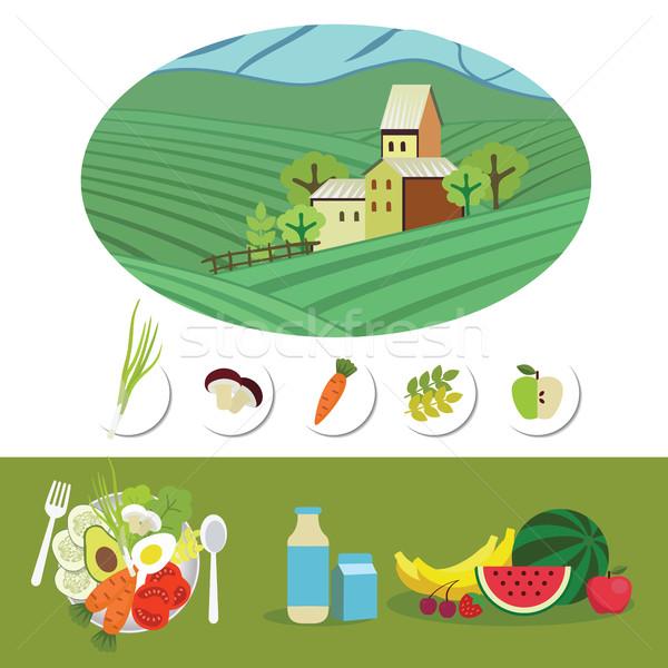 Fazenda comida crescido naturalismo produtos alimentação saudável Foto stock © studioworkstock